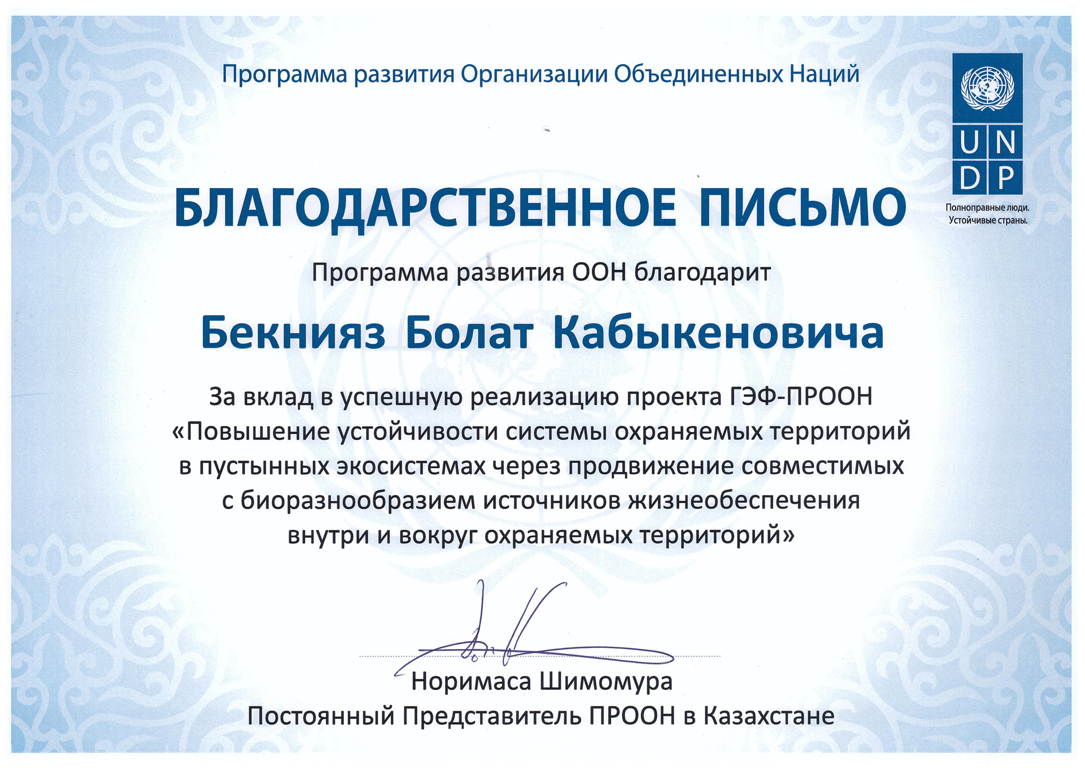 БП ПРООН рус 001